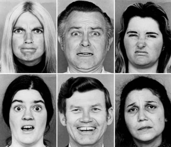 6faces